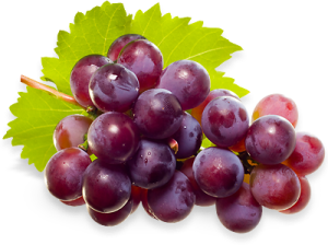 jind-grapes-hero.png