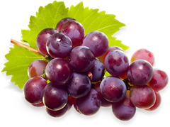 jind-grapes-hero_thumb.png