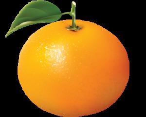 Khasiat-jeruk-dan-kulit-jeruk.png