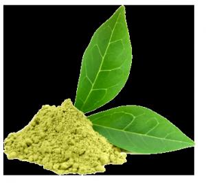 Matcha-leaves-300x267.png